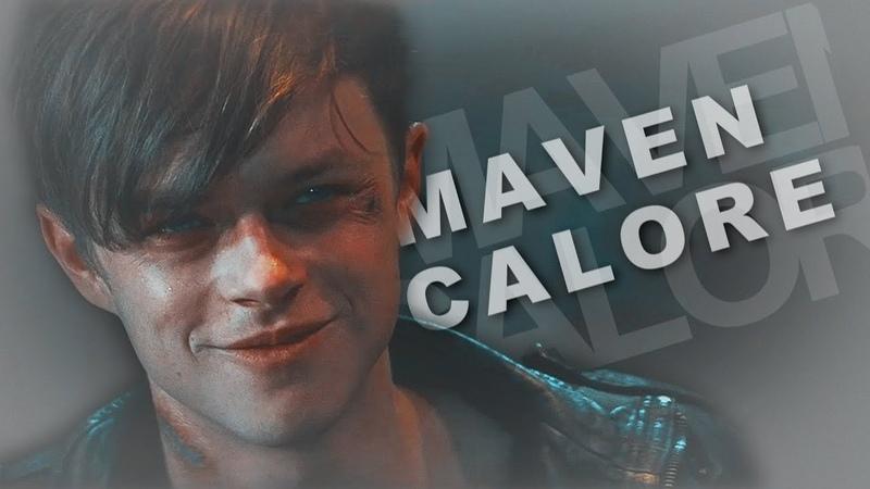 Maven Calore - Seven Nation Army