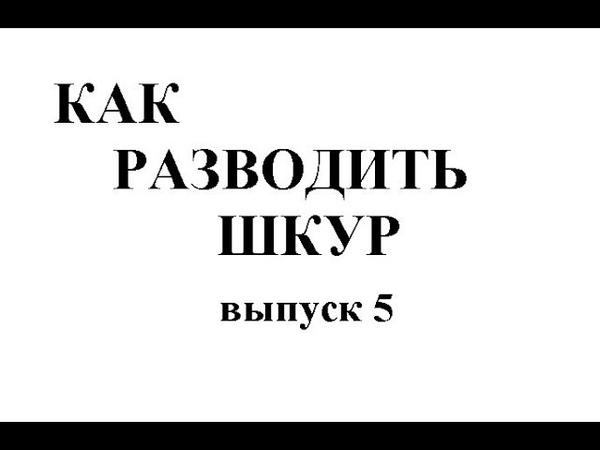 КАК РАЗВОДИТЬ ШКУР -5. Весьма полезны для мужчины...
