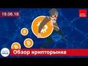 Новости криптовалют и блокчейн Беларусь цифровая экономика $800 тысяч за Siacoin AXA Ethereum
