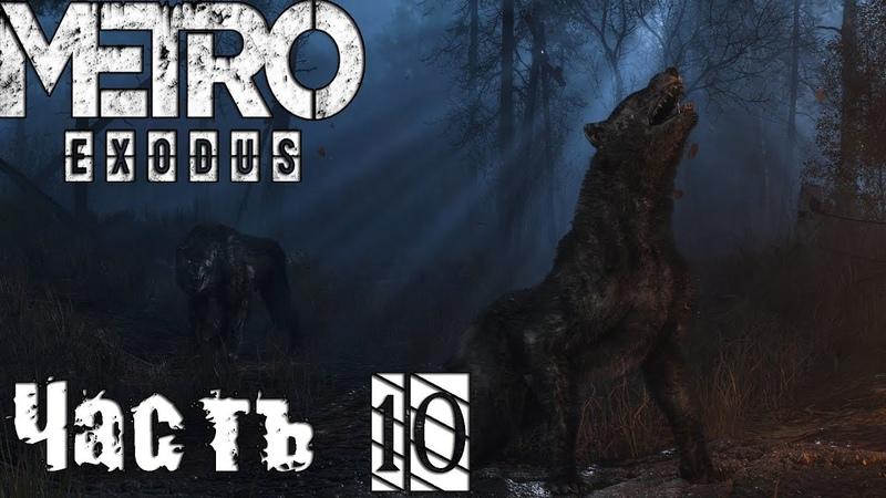 Прохождение Metro Exodus (Метро 2033 Исход) : ТАЙГА И АРБАЛЕТ | Часть 10 [1080p60FPS]