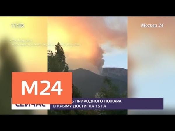 В Крыму из за жаркой погоды загорелись леса Москва 24