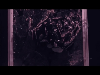 Two Ways To Survive -- EXO AU.mp4