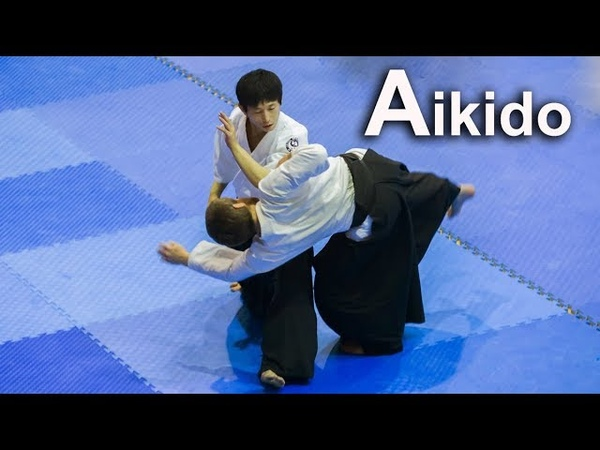 Aikido Freestyle techniques in Croatia ‐ Shirakawa Ryuji shihan
