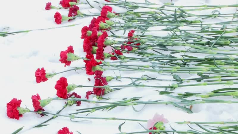 2018-12-07 – Вахта памяти, посвященная 77-ой годовщине Битвы под Москвой (Лобня)