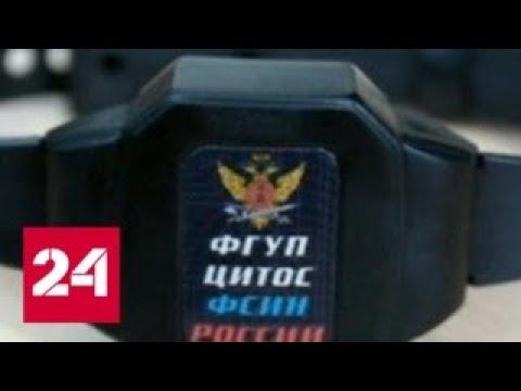 ФСИН требует от Реймера и сообщников 2 миллиарда рублей Россия 24