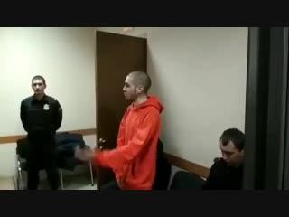 Хаски в суде.