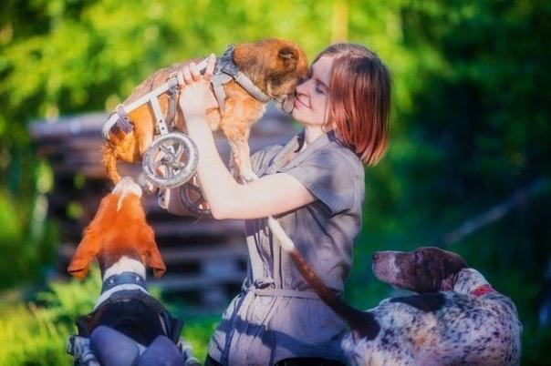 Москвичка и ее муж живут дикарями в сотнях километров от МКАД, чтобы заботиться о более сотни собак Фотограф из москвы, Даша Пушкарева, и ее муж Дмитрий поселились в сотнях километров от МКАД и