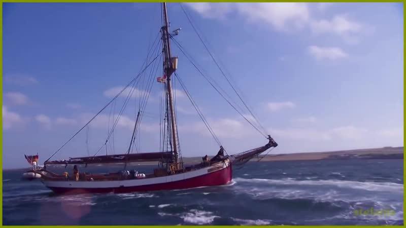 Stive Morgan -The Siren song
