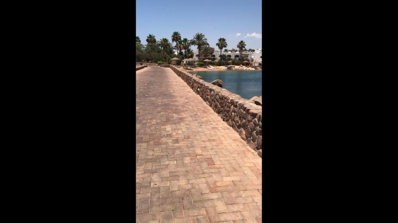 Египет (Шарм-эль-Шейх) 2018
