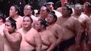 Жизнь после сумо