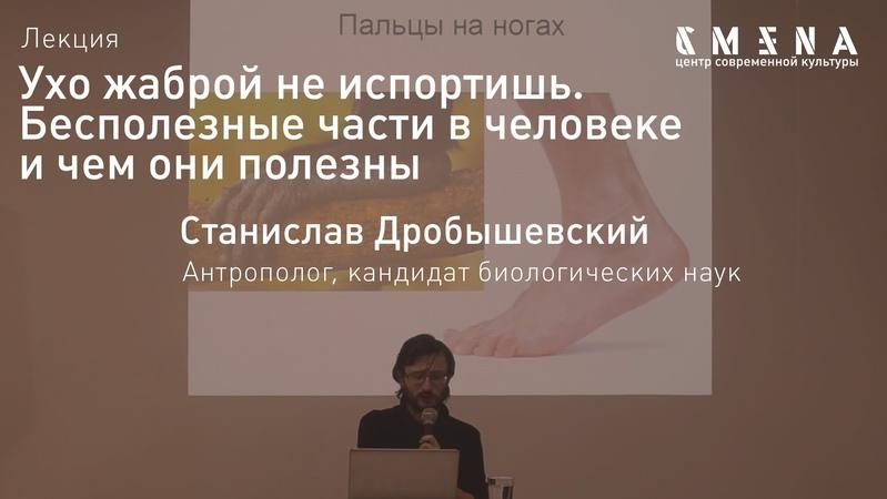 Станислав Дробышевский Лекция Ухо жаброй не испортишь Бесполезные части в человеке