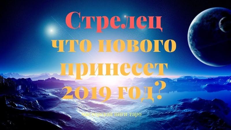 ЧТО НОВОГО ПРИНЕСЕТ 2019 Г СТРЕЛЕЦ