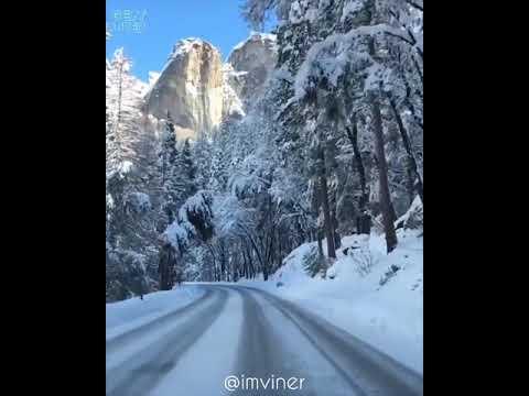 Красота зимней природы в Йосемитском парке (Yosemite national park)