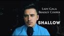 Lady Gaga Bradley Cooper Shallow Cover by Luke Kevitz