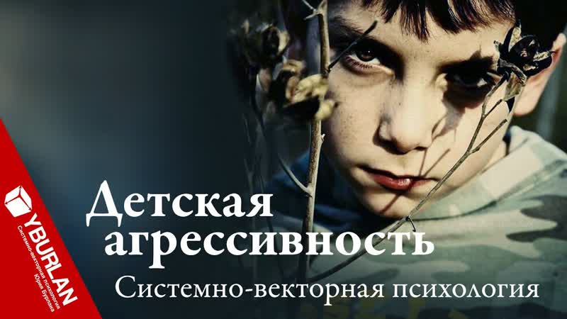Детская агрессивность. Коллективное воспитание против частного. Системно-векторная психология