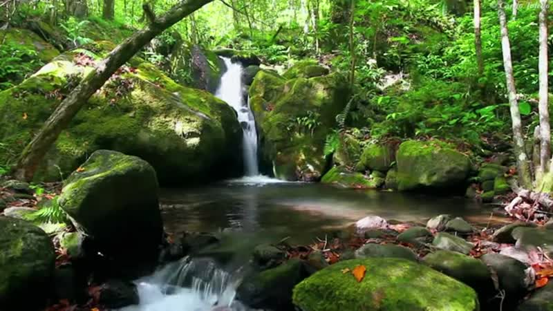 Musique Relaxante - Vidéo HD - Paysages, Nature. Relaxation(2)