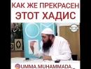 Как же прекрасен этoт Хадис Мухаммад Хoблoс