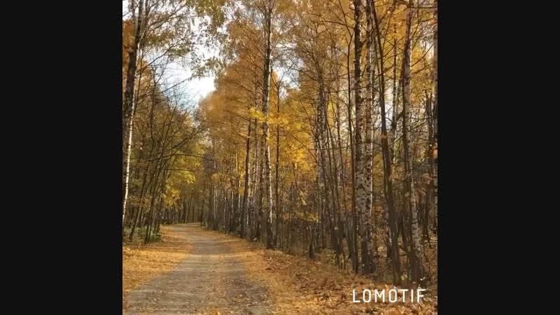 В этом году Осень радует 🤩🍂🍁