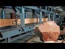 自動化木材加工廠,幾乎不用人工操作!網友:又有大批人要失業了