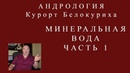 Евгений Бондарев Белокуриха Минеральная вода Основа курорта