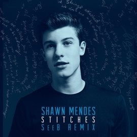 Shawn Mendes альбом Stitches
