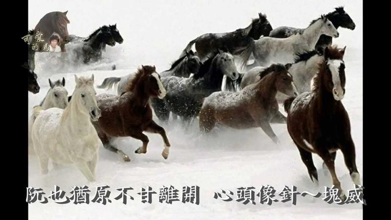 Чэнь Иланг Симпатичная лошадь Тайваньская песни