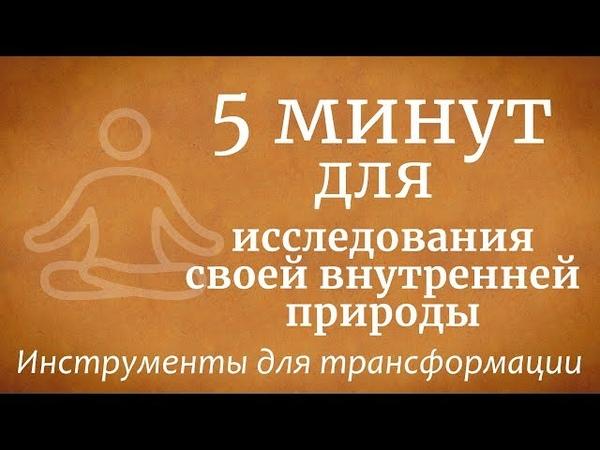 5 минут для исследования своей внутренней природы Садхгуру