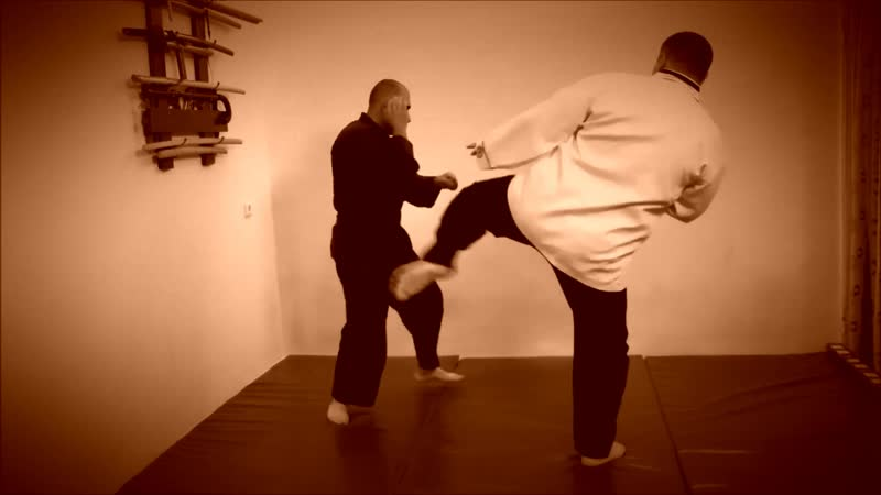 Rebel Hapkido Series 합기도 By Vidadi Hajiyev (56)