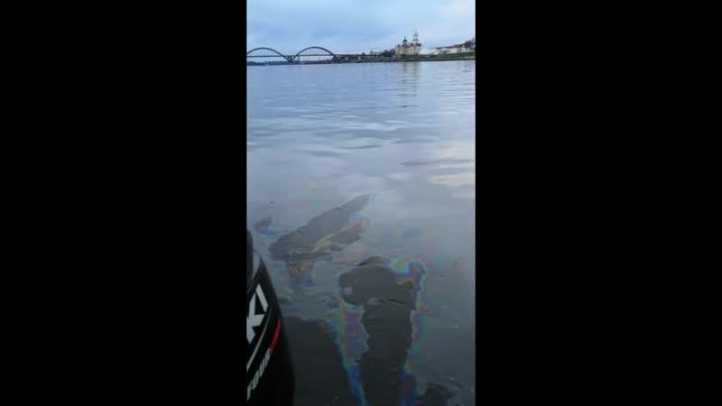 Рыбинск Как загрязняют наши реки!