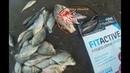 Протеин как прикормка для рыбалки Спортивное питание FitActive в качестве прикормки для рыбалки
