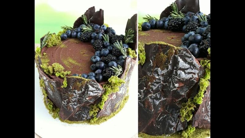 Кора из шоколада. Бисквитный мох. Торт пень