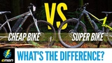 Cheap E- Bike Vs Super E-MTB What's The Difference