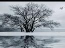 Inverno Franco Battiato