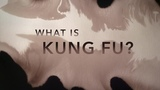 Kung Fu Means Supreme Skill - Hundred Eyes Teaching, James Bond Performing