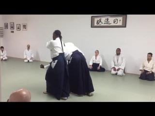 Aikido Donovan Waite Sensei New York AIKIKAI
