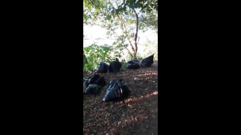 Капитал Инвест выкидывает мусор в чужие контейнера или во дворы 4