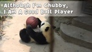 Although I'm Chubby, I Am A Good Ball Player   iPanda