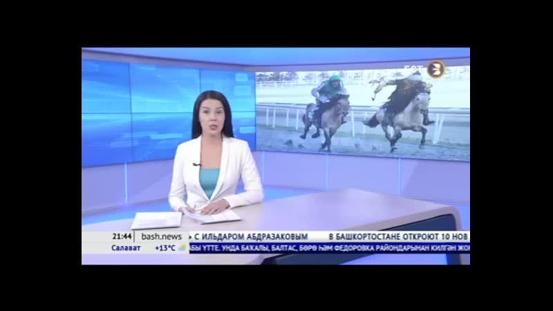 В Уфе прошел V этап конного турнира «Терра Башкирия»