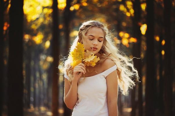 деревья обнажили плечи, скрывает маски желтый бал, кто говорит, что время лечит, тот никогда любви не знал… © федор