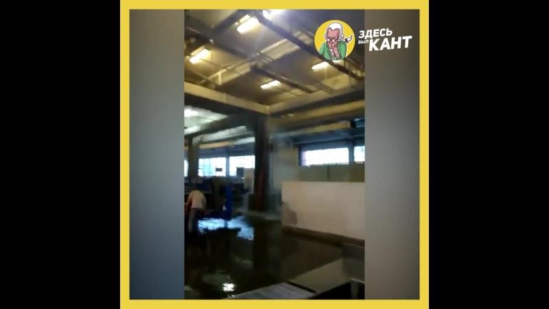 Из-за дождя в «Храброво» затопило багажное отделение | Здесь был Кант | vk.comkanthaus