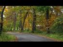 Дорога в осень. Раймонд Паулс. (Музыка из к_ф Двойной капкан) (1)
