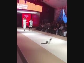 Самая грациозная модель на показе мод в Стамбуле