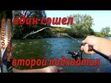 Ловля ГОЛАВЛЯ на спиннинг. Рыбалка на реке.