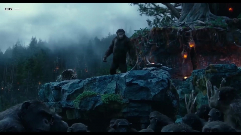 Dawn of the Planet of the Apes 2014 TOTV Trailer