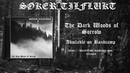 Søker Tilflukt - The Dark Woods of Sorrow (Full Album)