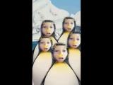 Snapchat-1873878308.mp4