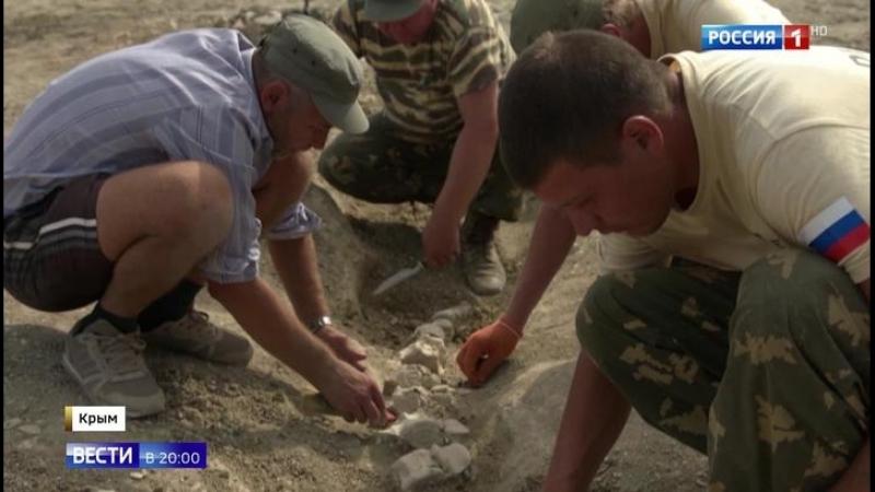 Скелет древнего кита найденный в Крыму стал сенсацией в научном мире