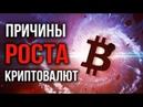 Причины роста Криптовалют Ethereum Bitcoin Tron и других альткоинов