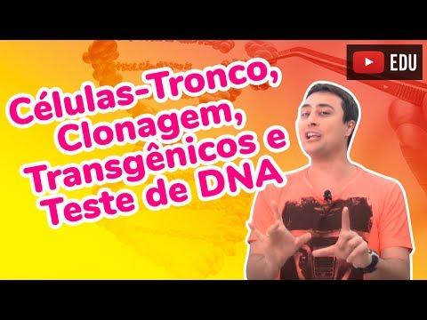 Células-Tronco, Clonagem, Transgênicos e Teste de DNA - Revisão ENEM Biologia - Prof. Paulo Jubilut