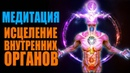 Медитация Тайный Эликсир Здоровья Энергетическое Исцеление от Болезни Внутренних Органов